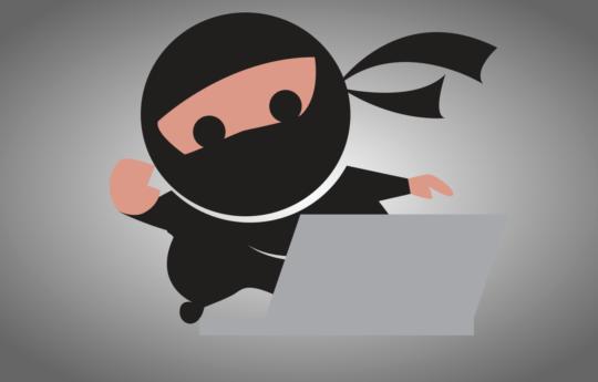 Ninja with a laptop